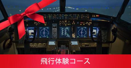 飛行体験コース
